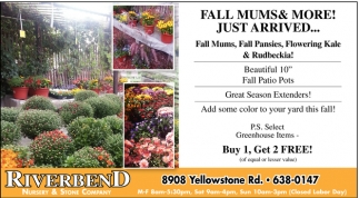 Fall Mums & More!