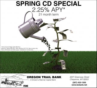 Spring CD Special