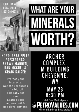 What Are Your Minerals Worth?